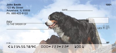Bernese Mountain Dog Check 0