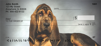 Bloodhound Check 0