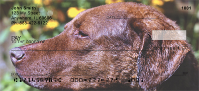 Chesapeake Bay Retriever Check 0