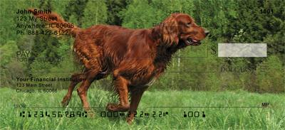 Irish Setter Check 0