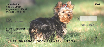 Yorkshire Terrier Check 0