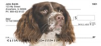 English Springer Spaniel Check Thumbnail