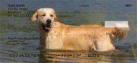 Golden Retriever Check Thumbnail