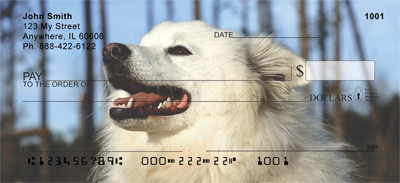 American Eskimo Dog Check 0