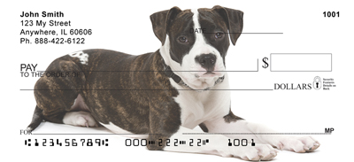 American Staffordshire Terrier Check 0