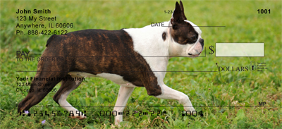 Boston Terrier Check 0