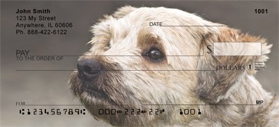 Cairn Terrier Check 0