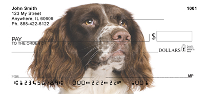 English Springer Spaniel Check 0