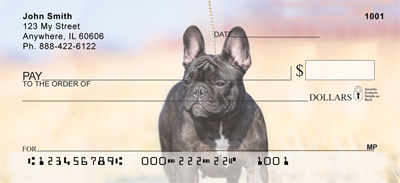 French Bulldog Check 1