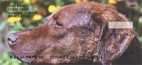 Chesapeake Bay Retriever Check Thumbnail